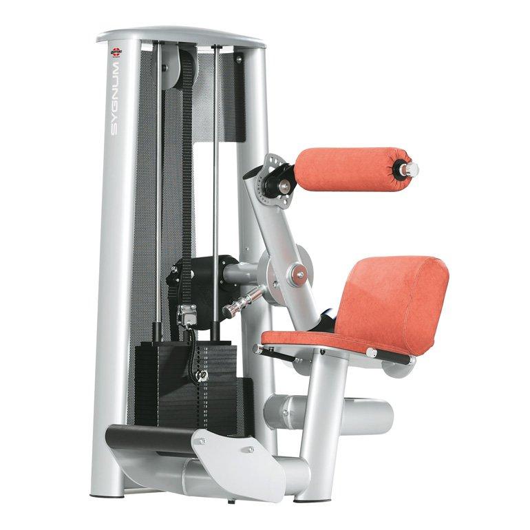 gym80 Standard Lower Back Machine
