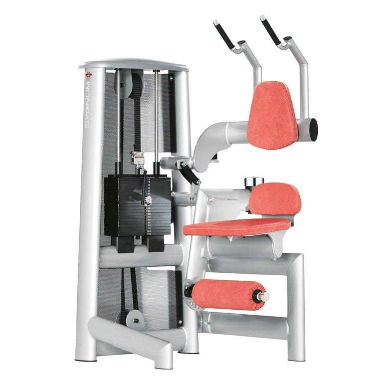 gym80 Standard Abdominal Machine