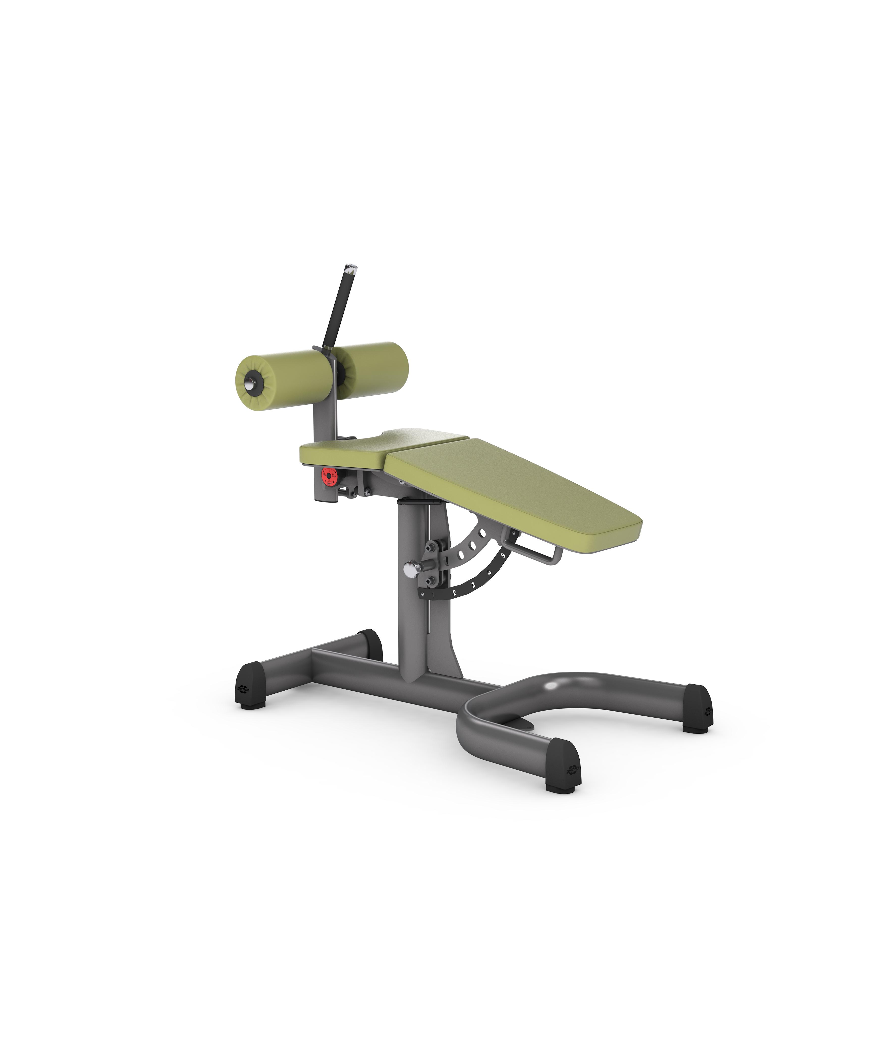gym80 Basic Adjustable Roman Chair