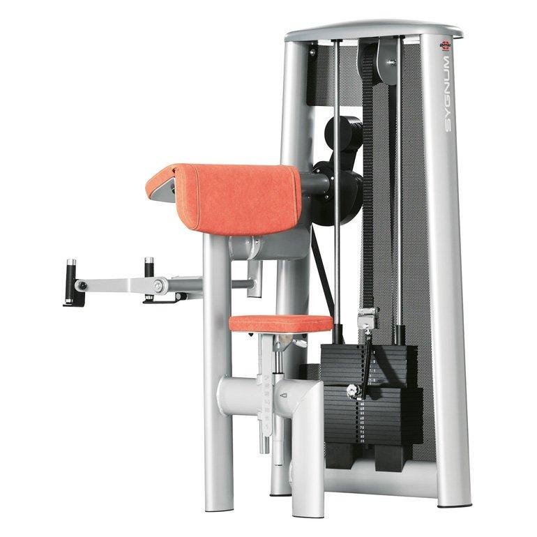 gym80 Standard Biceps Curl