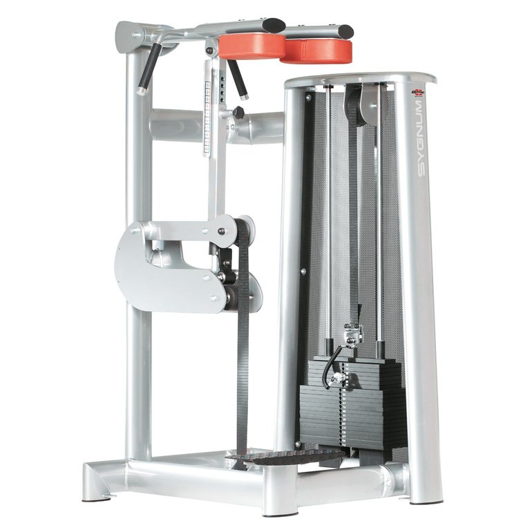 gym80 Standard Standing Calf
