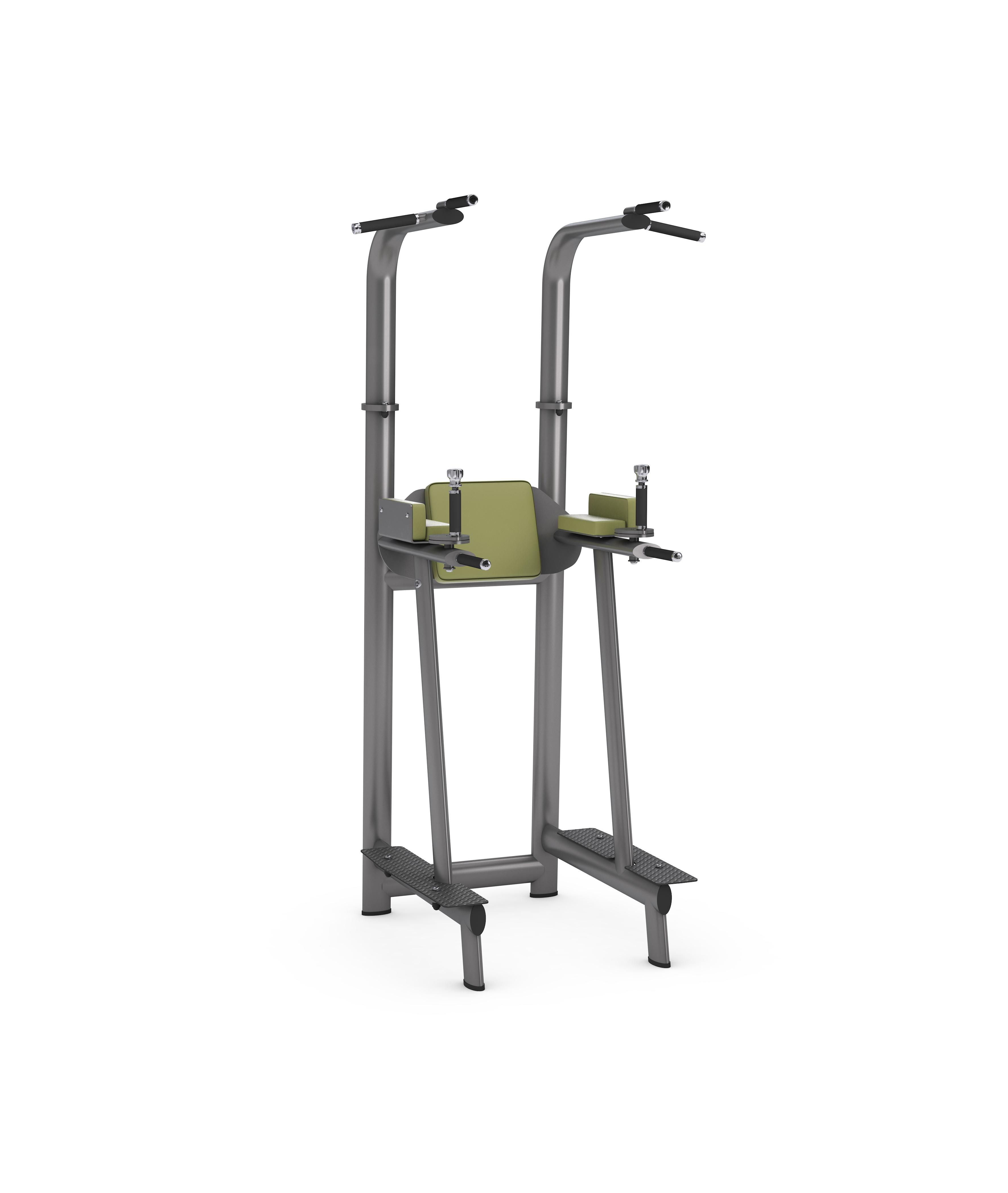 gym80 Basic Pull-Up/Dip/Leg Raise