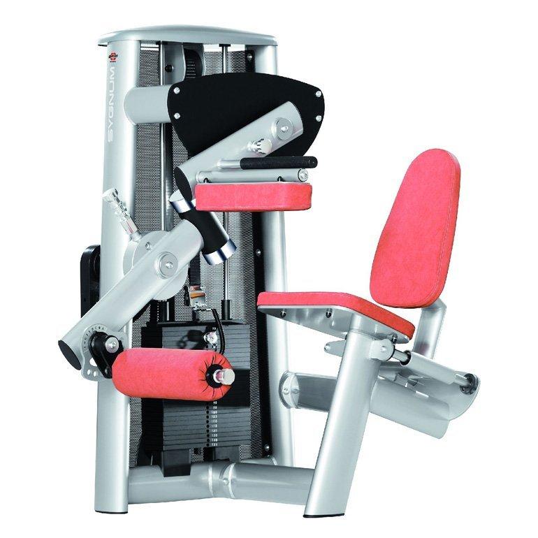 gym80 Standard Seated Leg Curl