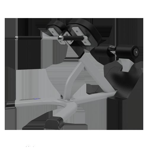 Nautilus Instinct 45 Degree Back Extension