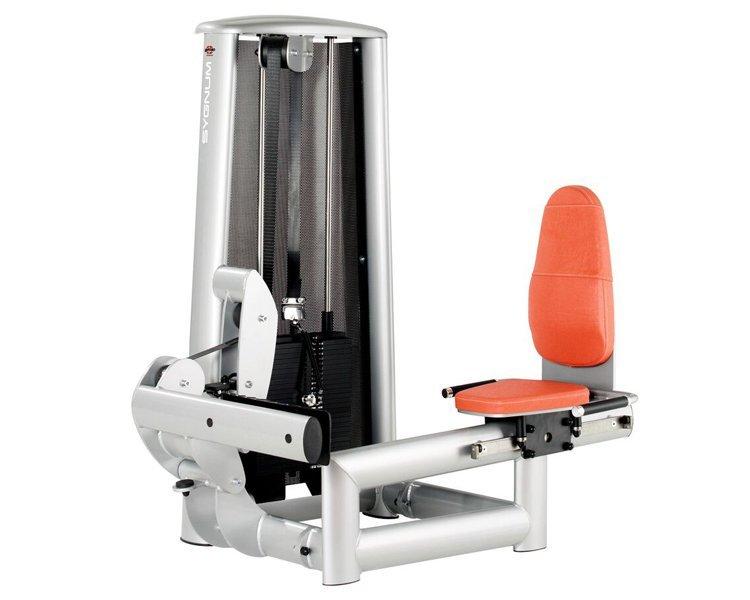 gym80 Standard Seated Calf